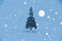 ぼっちクリスマスを回避する方法