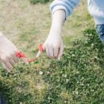 理想の結婚を引き寄せるために今出来る5つのこと
