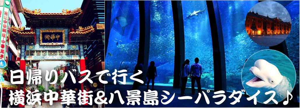8:50 JR千葉駅東口 集合の写真