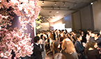 【東京】1店舗型街コンin銀座。一足先に桜を咲かせ(^^)♪ 男性資格限定婚活・恋活パーティー。 サブ画像1